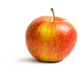 Rene Wellner chooses Ellips grading software to grade apples